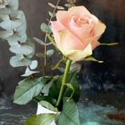 Pendentif Eveil Rose